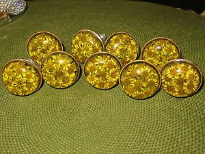Glass with Dried Flower Cabinet Drawer Pulls Knobs Vintage