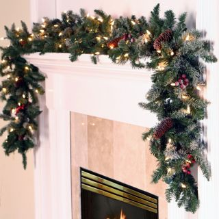 "9' x 14"" Pre Lit Frosted Edina Fir Artificial Christmas Garland Clear Lights"