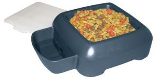 The Sporty Car SUV Travel Pet Dog Cat Food Water Dish Set Storage Container