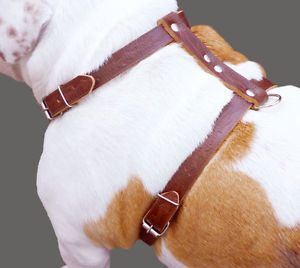 "Soft Leather Dog Harness 22"" 30"" Medium Large Brown"