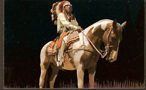 Indian Chief on Paint Horse Native American Postcard