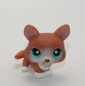 Littlest Pet Shop LPS 317 713 Target Corgi Fox Brown White Blue Eyes Dog Puppy