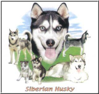 Lawn Siberian Husky Collage Puppy Dog T Shirt 4X 4XL 5X