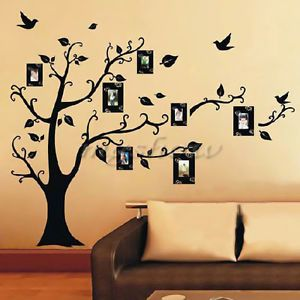 Black Photo Frame Room Home Family Tree Bird Wall Decal Art Sticker Label Paper