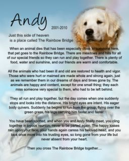 Rainbow Bridge Personalized Pet Memorial Your Photo Dog Cat Bird Horse