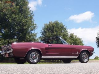 Gorgeous 1967 Ford Mustang Convertible Low Mile California Car 289 V8 Show or Go