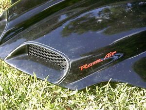 98 02 Pontiac Trans Am Firebird WS6 RAM Air Hood Painted w Decals Grills Struts