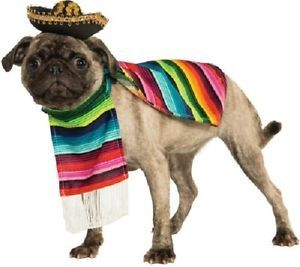 Mexican Serape Poncho Sombrero Pet Dog Clothing Accessory Halloween Costume