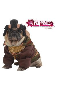 Pity The Fool Pet Dog Costume