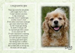 Pet Memorial Poem I Only Wanted You with Your Pet Photo
