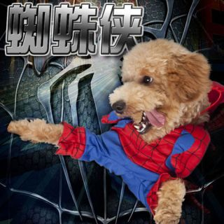 Spider Man Small Dog Pet Puppy Halloween Costume Coat Cape Cloak Clothes 5 Size
