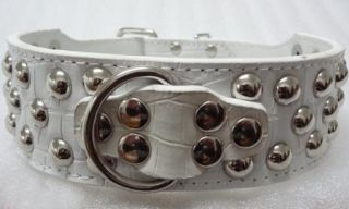 2'' Wide Brand New Mushroom Studded Leather Dog Collar Large Dog Pitbull Terrier
