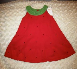 Adorable $34 Gymboree Red Green Watermelon Smocked Sweater Dress Sz 2T