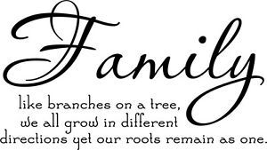 Family Tree Together Love Wall Vinyl Sticker Decal Quote Decor Cute