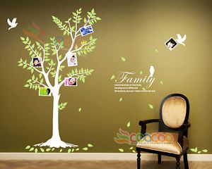 "Wall Decal Sticker 74"" Birds Frames Tree w Quote Family Like Branches on A Tree"