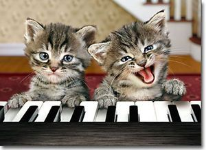 Kittens Play Piano Funny Relative Birthday Card Greeting Card by Avanti Press