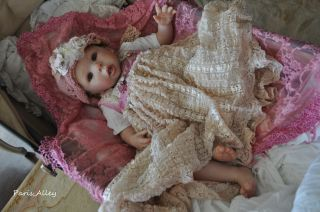 Raspberry Dream French Lace Dress Hat Blanket 4 Reborn Baby Doll