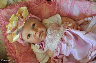 Country Rose French Lace Dress Hat Blanket 4 Reborn Baby Doll