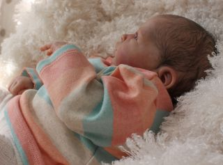 Beautiful Reborn Newborn Baby Girl Doll Nina Sam's Reborn Nursery