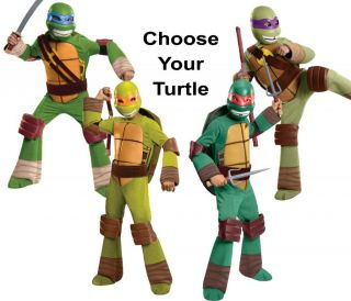 Child Nick TV Show TMNT Teenage Mutant Ninja Turtles Raph Mike Leo Don Costume
