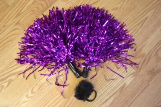 Sacramento Kings Cheerleader Purple Costume Pom Poms 2T Outfit Uniform Cheer