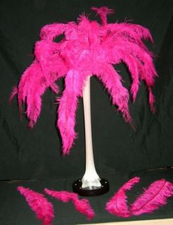 Ostrich LARGE 300 HOT PINK Floss Feather No Tower Vases