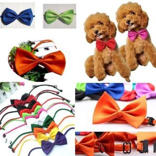 10pcs Adjustable Pet Dog Cat Cute Pre Tied Bow Tie Necktie Neck Collar