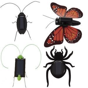 Educational Solar Powered Spider Butterfly Grasshopper Cockroach Toy Gadget Kids