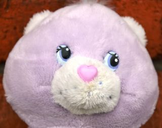 "2006 A B C Song Singing Share Bear Care Bears Baby 9"" Soft Plush English"