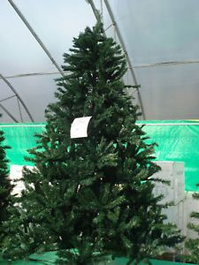 Artificial Pre Lit Christmas Tree 7' Douglas Fir Clear or Multicolored