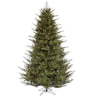 5.5' Pre Lit Full Itasca Frasier Artificial Christmas Tree   Warm Clear LED Lights